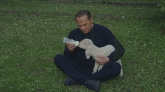 """Il ritorno di Berlusconi: """"Il M5S preleverà la metà dei vostri patrimoni"""" …Ormai è rincoglionito e bisogna capirlo… ma rendetevi conto che c'è gente che lo vota!!"""