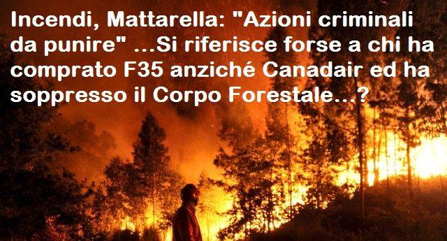 """Incendi, Mattarella: """"Azioni criminali da punire"""" …Si riferisce forse a chi ha comprato F35 anziché Canadair ed ha soppresso il Corpo Forestale…?"""