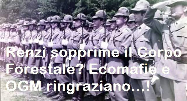 """L'Italia va a fuoco? Per rinfrescarVi la memoria, ecco la Lettera aperta a Renzi dal Comandante Regionale Umbria del Corpo Forestale: """"Renzi sopprime il Corpo Forestale? Ecomafie e OGM ringraziano""""…!"""