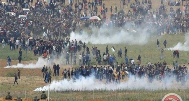 """I Tg ed i giornali parlano di """"Tensione e scontri al confine tra Israele e Gaza"""" e aggiungono: """"12 Palestinesi morti e oltre 1000 feriti""""… E gli Israeliani? Niente? Sveglia Gente, possibile che crepano solo o Palestinesi? Non è né tensione né scontri. È GENOCIDIO"""