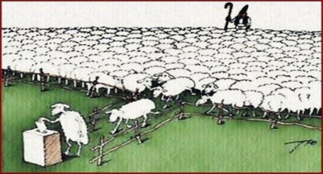Ricapitoliamo… FRANCIA: migliaia di persone in piazza per protestare contro il Governo. ITALIA: il partito che ha fregato 49 milioni al suo popolo continua a salire nei sondaggi…