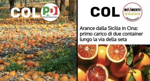 Ignazio Corrao (M5s): con il Pd gli agricoltori non raccoglievano le arance, con noi migliora l'export